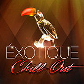 Chill-out exotique (50 chansons qui fusionnent chill-out et musiques du monde) by Various Artists