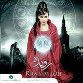 2011 by Rowaida