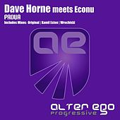 Padua (Dave Horne Meets Econu) by Dave Horne