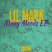 Many Moods EP Vol 2 - Single by Derrick Carter