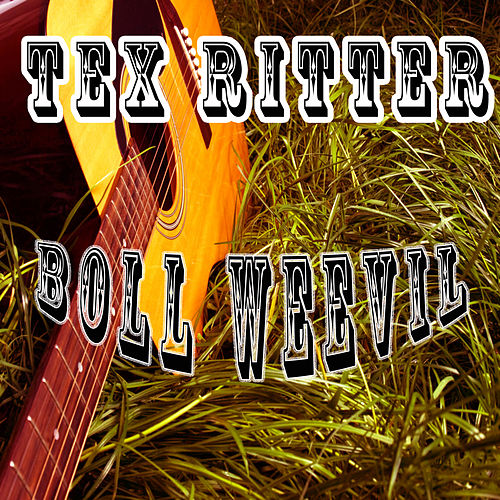Boll Weevil by Tex Ritter