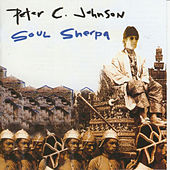 Soul Sherpa by Peter C. Johnson