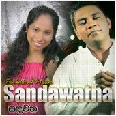 Sandawatha by Meena