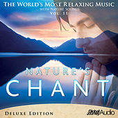 The World's Most Relaxing Music with Nature Sounds, Vol.11: Nature's Chant (Deluxe Edition) by Global Journey