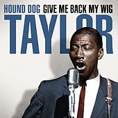 Hound Dog Taylor - Give Me Back My Wig by Hound Dog Taylor