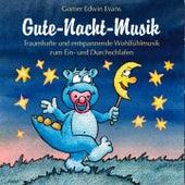 Gute-Nacht-Musik :  Harmonische Musik zum Einschlafen für Kinder by Gomer Edwin Evans