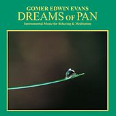 Dreams of Pan: Instrumental Music for Relaxation & Meditation by Gomer Edwin Evans