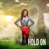 Hold On by Eva Mccullar