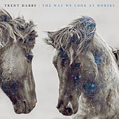 The Way We Look at Horses by Trent Dabbs