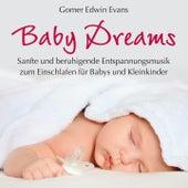 Baby Dreams : Beruhigende Musik zum Einschlafen by Gomer Edwin Evans