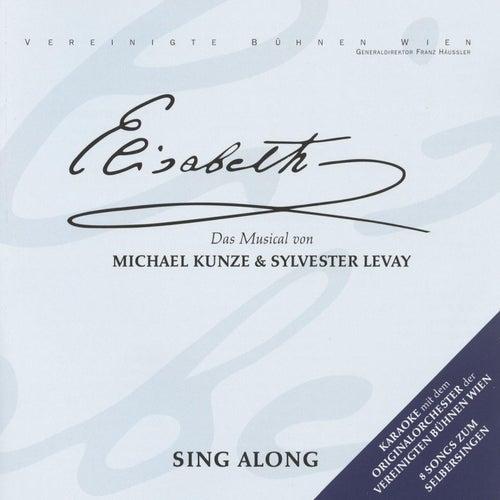 Elisabeth - Sing Along by Orchester Der Vereinigten Bühnen Wien
