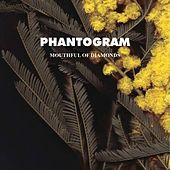 Mouthful Of Diamonds by Phantogram