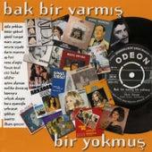 Bak Bir Varmış Bir Yokmuş by Various Artists