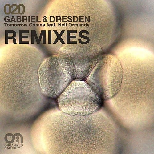 Tomorrow Comes (Remixes) by Gabriel & Dresden