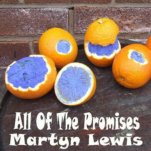 All of the Promises by Martyn Lewis