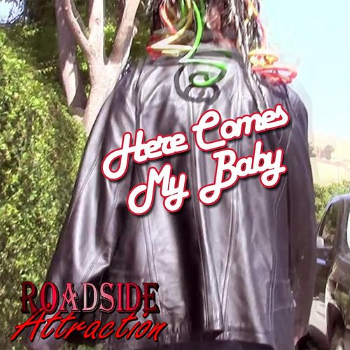 Here Comes My Baby by Roadside Attraction