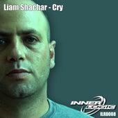 Cry by Liam Shachar