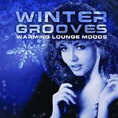 Winter Grooves Warming Lounge Moods by Various Artists