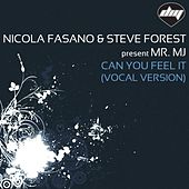 Can You Feel It (Vocal Version) by Nicola Fasano