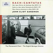 J.S. Bach: Cantatas for the 11th Sunday after Trinity by Various Artists