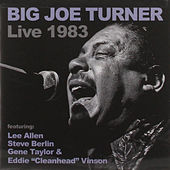 Big Joe Turner Live 1983 by Various Artists
