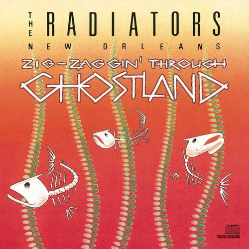 Zigzagging Through Ghostland by The Radiators