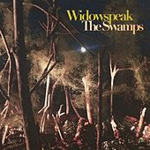 The Swamps by Widowspeak