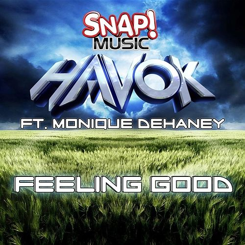 Feeling Good by Havok