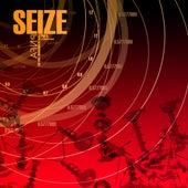 Seize by Pnfa