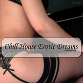 Chill House Erotic Dreams, Vol. 2 by Various Artists