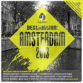 Destination: Amsterdam 2013 by Various Artists