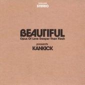 Beautiful: Opus of Love Deeper Than Flesh Vol. 1 & Vol. 2 by Kankick
