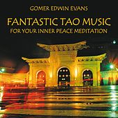 Fantastic Tao Music for Meditation by Gomer Edwin Evans