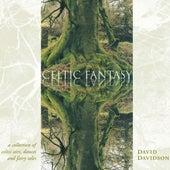 Celtic Fantasy by David Davidson