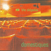 Domestiques by The Delgados