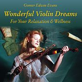 Wonderful Violin Dreams for Relaxation by Gomer Edwin Evans