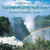 Natural Healing Melodies for Relaxation by Gomer Edwin Evans
