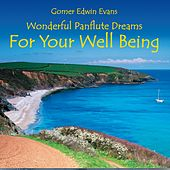 For Your Well Being: Wonderful Panflute Dreams by Gomer Edwin Evans