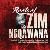 Roots of Zim Ngqawana by Zim Ngqawana