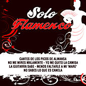 Solo Flamenco by Various Artists