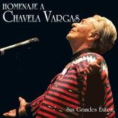 Homenaje a Chavela Vargas: Sus Grandes Éxitos by Chavela Vargas