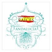 Colección Raíces - Andalucía by Various Artists