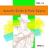 Acoustic Guitar e Viola, Vol.14 by Various Artists