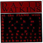 At The Piano by David Watkins