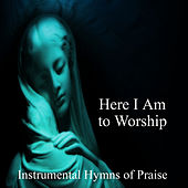 Here I Am to Worship: Instrumental Hymns of Praise by The O'Neill Brothers Group