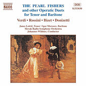 Operatic Duets for Tenor and Baritone by Various Artists