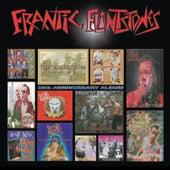 20th Anniversary Album by Frantic Flintstones