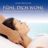 FÜHL DICH WOHL : Entspannungsmusik für die Seele by Gomer Edwin Evans