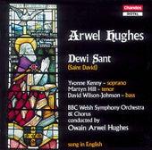 Hughes: Dewi Sant (St. David) by Yvonne Kenny