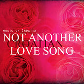 Not Another Love Song by Various Artists